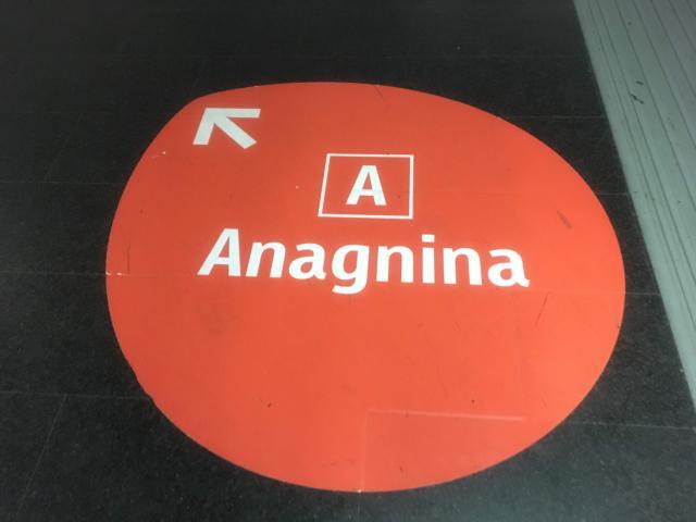 案内を見ながらAnagnina方面ホームへ
