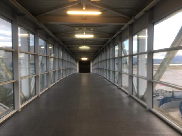 高架の中を通過