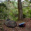 【写真】野宿にテントはありか否か。