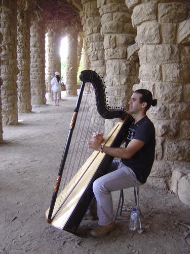 ハープ 竪琴演奏