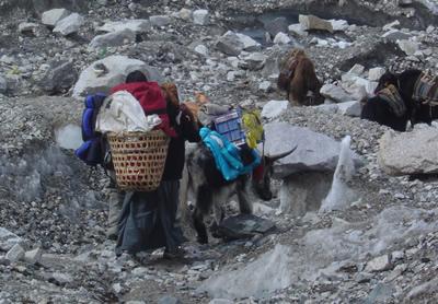 【写真】ベースキャンプではゴミ・排泄物はキチンと管理されている。